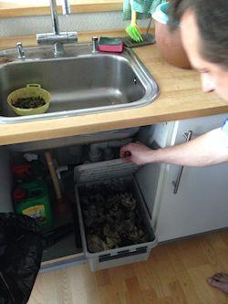 GENANVENDELSE. Det grønne affald ender i kompostkassen under vasken og bidrager til at reducere mængden af affald i lejligheden.
