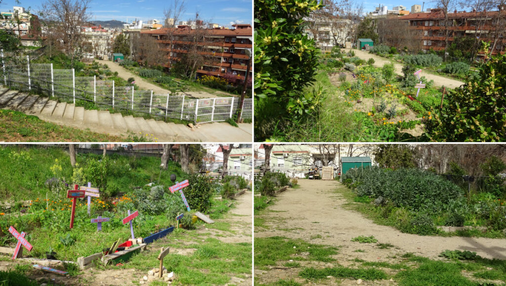 Hort Urbà Comunitari Font de la Guatlla